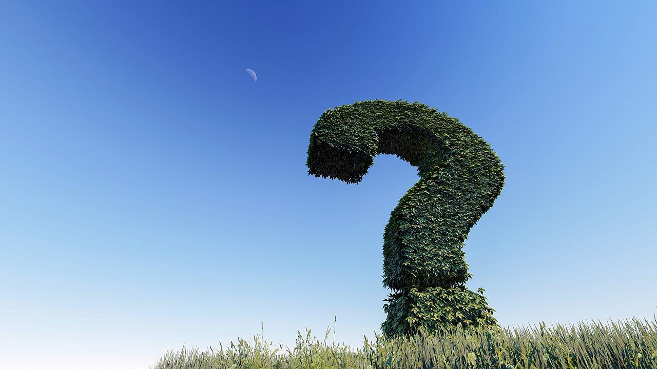 Умение задавать вопросы